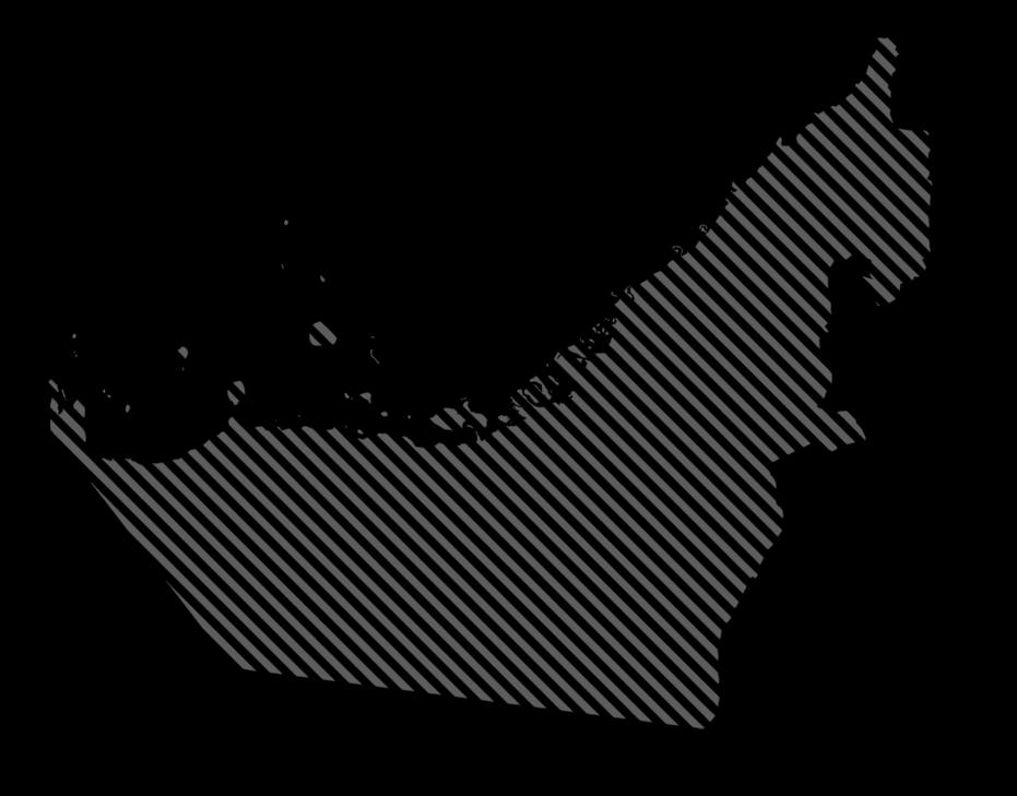 971 טורס – מסעות ברכבי יוקרה באיחוד האמירוית